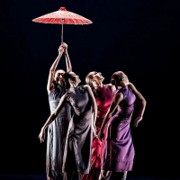Nai-Ni Chen Dance Company to Perform In Summer Concerts On The Hudson Photo