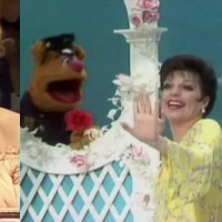 15 Videos of Broadway Stars on THE MUPPET SHOW Photo