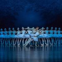 China Arts and Entertainment Group Ltd. and Shanghai Ballet Present SWAN LAKE Photo