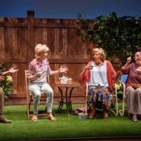 BWW Review: ESCAPED ALONE at Signature Theatre Photo