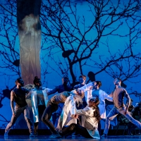 BWW Interview: Nimbus Dance Works Brings Equity Home Photo