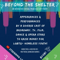 Tituss Burgess, Alex Newell and More to Appear On BEYOND THE SHELTER A Virtual Pride  Photo