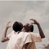 New Global Free Film Series FILMS.DANCE Announces Launch Photo