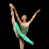 The 7th South African International Ballet Competition Pivots Online