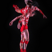 BWW Review: BWW REVIEW: THE DANCE GALLERY FESTIVAL PRESENTS 18 CHOREOGRAPHERS at Aile Photo