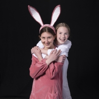 BWW Review: THE VELVETEEN RABBIT at Des Moines Playhouse: An Imaginative Journey That Photo