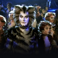 BWW Review: CATS, The Shows Must Go On Photo