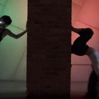 Gibney Company 30th Anniversary Virtual Gala Debuts New Work By Rena Butler, June 30 Photo