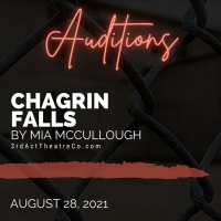 3rd Act Theatre Company Announces Auditions for Oklahoma Premiere of CHAGRIN FALLS Photo