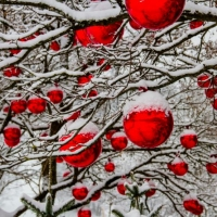 Student Blog: What We Know About 'Spirited': The Soon-to-Be Holiday Favorite Photo