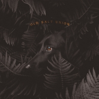 Old Salt Union Album 'Where The Dogs Don't Bite' Out Today