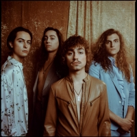 Greta Van Fleet Debut Live Video of 'Heat Above' Photo