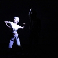 Nai-Ni Chen Dance Company In Collaboration With Flushing Town Hall Present Virtual Cr Photo