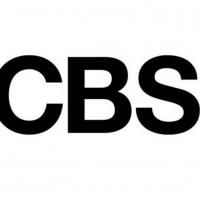 Hannah Simone & Elizabeth Hurley Join New CBS Comedy Photo
