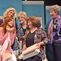 BWW Review: STEEL MAGNOLIAS: Bonds in a Salon at Beef & Boards Photo