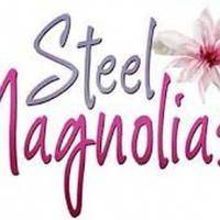 Hendersonville Performing Arts Company Announces Auditions For Steel Magnolias Photo