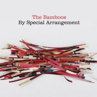 The Bamboos Release New Orchestral Album, BY SPECIAL ARRANGEMENT, via BMG