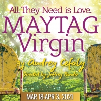 Gulfshore Playhouse Presents MAYTAG VIRGIN Photo