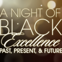 Fort Worth Opera Announces A NIGHT OF BLACK EXCELLENCE: PAST, PRESENT, AND FUTURE Vir Photo