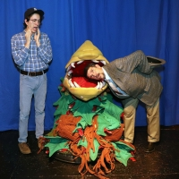 LITTLE SHOP OF HORRORS Comes To Sutter Street Theatre Photo