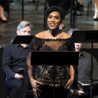 BWW Feature: ONLINE VIRTUAL OPERA TOUR at Home Computer Screens Photo
