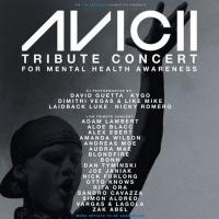 Avicii Tribute Concert for Mental Health Set For December 5 to Feature Adam Lambert, Photo