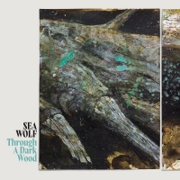 Sea Wolf Announces First New Album In Six Years Photo