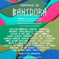 Carnaval de Bahidora Announces First Wave of Artists Photo