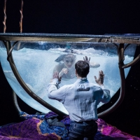 BWW Review: AMALUNA at The Big Top At Oracle is a wondrous and enchanting night at the circus that will be enjoyed by all ages.