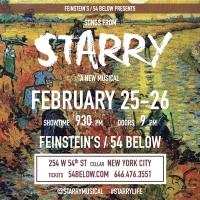 STARRY, a Pop-Rock Musical About Vincent van Gogh, Will Return to Feinstein's/54 Belo Photo
