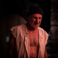 BWW Review: BENGAL TIGER AT THE BAGHDAD ZOO at Little Theatre, University Of Adelaide Photo