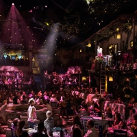 Photo Flash: MAMMA MIA! THE PARTY Begins Performances Tonight; Check Out All New Prod Photo
