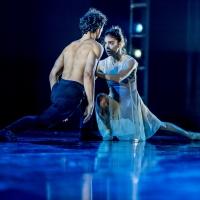BWW Previews: The Pennsylvania Ballet's Streaming Spring Season of World Premieres Photo