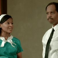 BWW Review: The American History Theater, The Roustabouts Theatre Co., & Teenage Yout Photo