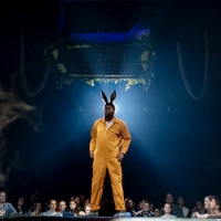BWW Review: A MIDSUMMER NIGHT'S DREAM, Bridge Theatre via National Theatre At Home Photo