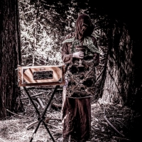 Botanist Reemerges With New Track 'Bacteria' Photo