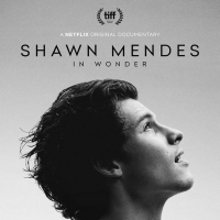 Shawn Mendes Documentary IN WONDER Comes to Netflix Nov. 23