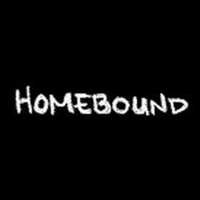 BWW Video: Episode Nine of Round House Theatre's Webseries Homebound Photo