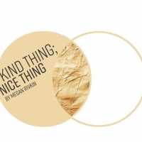 BWW Review: KIND THING; NICE THING at Homesick Play Project Photo