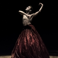 QUEER BUTOH 2021 to Begin Streaming This June Photo