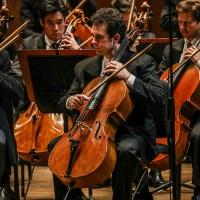 Houston Symphony Announces Four-Concert Chamber Music Series