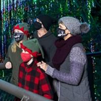 Atlanta Botanical Garden Announces 11th Annual GARDEN LIGHTS, HOLIDAY NIGHTS Photo
