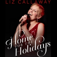 BWW Review: LIZ CALLAWAY PERFORMS VIRTUAL HOLIDAY CONCERT IN YOUR HOME from The Straz Photo