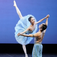 8th SA International Ballet Competition Will Be Performed at the Artscape Opera House Photo