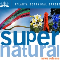 Garden Presents SUPERnatural Sculpture Exhibit This Spring! Photo