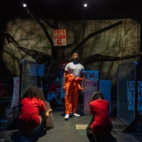 BWW Review: BLOOD AT THE ROOT, Raleigh Little Theatre