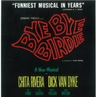 BYE BYE BIRDIE y los musicales rock Photo