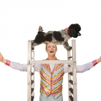 PUPPY PALS - THE COMEDIC STUNT DOG SHOW Bounds Into Boca Raton & Delray Beach In September Photo