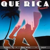 VIDEO: Pitbull, Sak Noel & Salvi Release 'Que Rica (Tocame)' Photo
