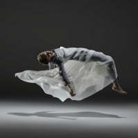 Sharp & Fine Premieres A PLAY FOR DANCE This February